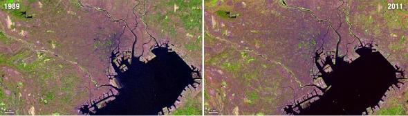 טוקיו 1989-2011