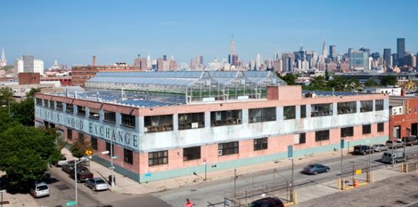 חממות חקלאיות על גג בניו יורק