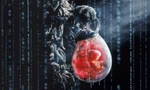 המטריקס - האדם כסוללת אנרגיה