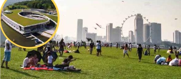 גג מבנה המרינה שעוצב כפארק - סינגפור