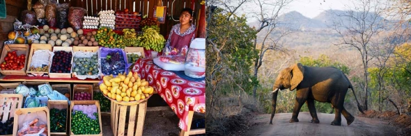 מאלאווי | מקסיקו