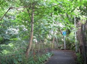 ציר ירוק בעיר
